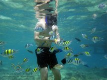 Resized Underwater view1