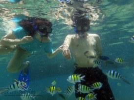 Resized Underwater view2